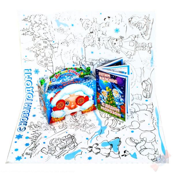 Новогодний подарок Прятки с раскраской и книжкой